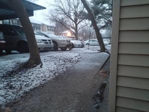 The first good snowfall in Lexington 2015.