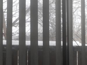 Snow outside my window Jan 2015